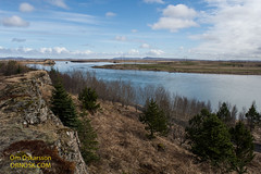 Hellisskógur / Selfoss (raudkollur) Tags: ísland iceland hellisskógur selfoss nikond7200