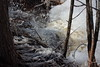 Rushing Water and Ice (C.A.Johnston) Tags: water foam creek ice melt spring nature