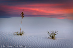 Sunset at White Sands National Monument (Road Trip Rip) Tags: sunset whitesands nationalpark nationalmonument sand dunes roadtrip newmexico