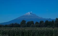 Popocatepetl Volcano / Вулкан Попокатепетль (Vladimir Zhdanov) Tags: travel mexico puebla landscape sky mountain volcano tree field grass popocatepetl