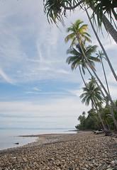 DSC_0119 (yakovina) Tags: silverseaexpeditions indonesia papua new guinea island auri islands
