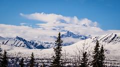 Denali in the Clouds (beyondjunderdome) Tags: alaska denali travel olympus m43 usa