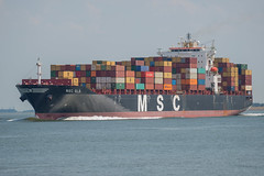 MSC Elâ_DVL0508 (larry_antwerp) Tags: container 9282259 mscela mscelâ schip ship vessel 船 船舶 אונייה जलयान 선박 کشتی سفينة schelde 斯海尔德河 スヘルデ川 스헬더 강 رود شلده سخيلده nederland netherlands walsoorden zeeland