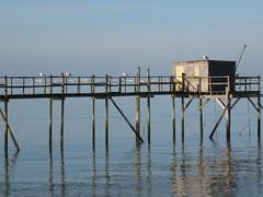 Carrelet à Fouras (17) (joëlroselier) Tags: carrelet océan mer atlantique bleu passerelle littoral