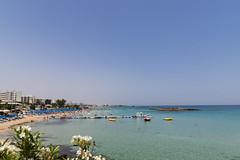 Fig Tree Strand Zypern