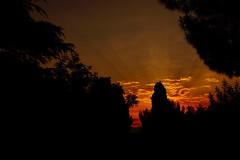 quand le soleil se pointe à l'horizon, (guy dhotel) Tags: aube sunrise chaleur oiseau bird trees