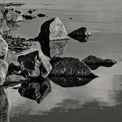 Shoreline rocks (Stefano Rugolo) Tags: stefanorugolo pentax k5 pentaxk5 helios44258mmf2 helios442 helios ricohimaging monochrome shoreline rocks reflection water sea light summer hälsingland sweden reeds manualfocuslens manualfocus manual vintagelens m42