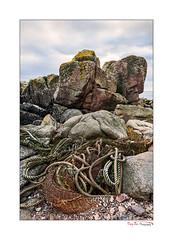Flotsam_0027 (The Terry Eve Archive) Tags: litter fishnets trawling commerciallitter peterhead aberdeenshire scotland lichen