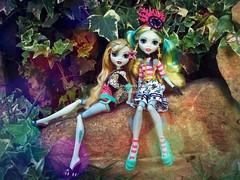 My two Lagoonas (Linayum) Tags: lagoonablue lagoona mh monster monsterhigh mattel doll dolls muñeca muñecas toys toy juguetes juguete linayum