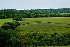 West Fork of the Licking River in Kentucky (durand clark) Tags: farm floodplain kentucky northernkentcky morgankentucky berrykentucky westforklickingriver nikond750 harrisoncountykentucky