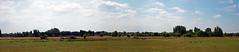 Gentbrugse Meersen vanop Scheldedijk (juliensart) Tags: gent vlaanderen belgium juliensart natuur nature green groen gentbrugge ghent landschap landscape lumix panasonic dmc gx80 gx85 zoom 1260 micro four thirds raw fourthirds 43rds trees bomen sky