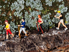 Tiny People - Nordic walking rustikal (explored 24.07.18) (J.Weyerhäuser) Tags: makro nordicwalking tinypeople preiser studio h0 187