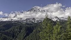 A Skirted Mountain (Mr.LeeCP) Tags: mountain clouds snow view evergreens washington trees green