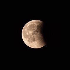 P1072043.jpg (ricore50g) Tags: eclipse lune morbihan 56 bzh bretagne breizh morbihantourisme bretagnetourisme miamorbihan presquilederhuys saintgildasderhuys golfedumorbihan bretagnefocuson igersbretagne destinationbretagne brittany madeinbzh panasonic lumix g9 100400