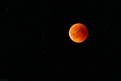 Bloodmoon in Nachrodt-Wiblingwerde, Germany 07/27/2018 (-cg86-) Tags: mondfinsternis bloodmoon luna moon space sky nachthimmel