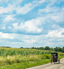 amish-0684 (FarFlungTravels) Tags: holmescounty amish country rural horse buggy bicycle farm tour lavonnedebois