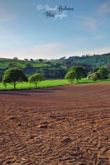 Paysage  de  l'Aulne maritime (Finistère,   Bretagne, France) (pascalkerdraon) Tags: france bretagne brittany finistere pen penn ar bed paysage landscape argoat