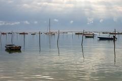 Bassin d'Arcachon - cap ferret - village de l'Herbe (Jean-Philippe Le Royer) Tags: bassind'arcachon capferret bateaux boat sea seascape landscape