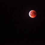 _Beauty of the night sky_ thumbnail