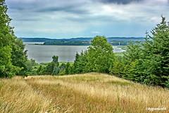 Landschaftspanorama (garzer06) Tags: wolken buschwitz deutschland grün wasser landschaft landscapephotography landschaftsbild mecklenburgvorpommern landschaftsfoto inselrügen naturphotography insel landschaftsfotografie naturfotografie rügen