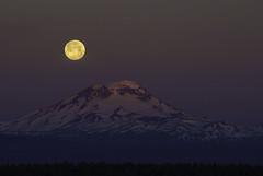 The perfect temperature (Omnitrigger) Tags: moon moonset fullmoon oregon cascades three sisters nature
