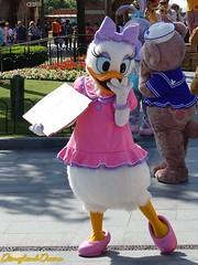 Daisy Duck (Disneyland Dream) Tags: daisy duck shanghai disneyland disney park resort personnage character
