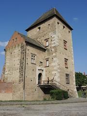 Renaissance Castle of Simontornya 128 (Andras Fulop) Tags: simontornya nikon hungary castle fortress renaissance