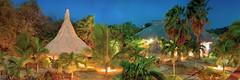 Exposure (Isai Hernandez) Tags: exposure tree scene atmospheric mood night places photography follow me treetop long