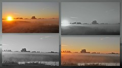 And another hot day.....6-8-2018 (sunrise) (wilma HW61) Tags: sunrise leverdusoleil solopgang sonnenaufgang alba zomer summer sommer été bw blackandwhite zwartwit monochrome keuren hoenwaard weiland meadow zon sun sunlight zonlicht ochtendstond morningglory morning natuur nature natur naturaleza hattem gelderland veluwe dageraad dawn daybreak outdoor holland holanda paysbas paesibassi paísesbajos europa europe wilmahw61 wilmawesterhoud collage photoborder sky water tree