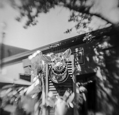 Tin Pig (bluechromis1) Tags: 6x6 greshamartsfair2018 jchpan400 kodakhawkeyebrownieflash pctea analog analogue blackandwhite film flippedlens homedeveloped homesouped mediumformat monochrome selfdeveloped