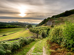 7th August 2018 (Rob Sutherland) Tags: sparkbridge crake valley ulverston cumbria cumbrian lakes lakeland lakedistrict nationalpark ldnp track path trail farm farming agriculture agricultural england english britain british uk evening walk walking outdoor
