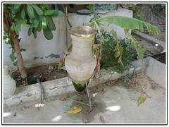 (aZ-Saudi) Tags: water arabic saudi arabia ksa    alhasa         arabin  arabs