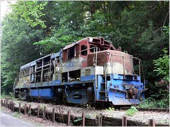 Train to Nowhere (Mary and her camera) Tags: road abandoned train painted rusty forgotten lonely isolated easttennessee surprising