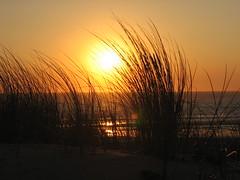 monta (Milly4) Tags: ocean sunset sun france beach wow evening frankreich meer mare dune atlantic gras monta abigfave