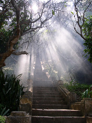 stairway to heaven? (Mr Sugden) Tags: stairs smoke laos luangphrabang scoreme44