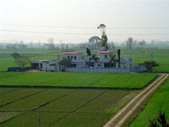 Farm House (Manny Pabla) Tags: trip travel flowers winter vacation people india house heritage home field architecture barn rural buildings countryside asia village basket symbol farmers blossom farm indian wheat sony prayer ghar knife culture cybershot desi weapon fields mustard farms crops farmer grains dagger turban sikh agriculture punjab fennel bungalow agricultural punjabi aur singh greenrevolution kaur pind banga india sanctity saini lasara rahon pabla country foodgrains balachaur nawanshahr khoti phillaur urapar chakdana doaba mukandpur saroya garhshankar nawashahr nawanshahar nawashahar
