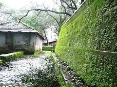 This moss covered wall made a good frame (Mezzotint) Tags: matheran