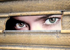 I can see you (judepics) Tags: park uk london metal shop photo over picture behind grille islington finsbury bigmomma utatafeature 7daysofshooting pfogold shootanythingsunday week41throughahole