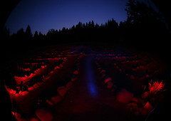 labyrinth in red (ehoyer) Tags: longexposure blue trees red 20d pine night oregon canon stones ground fisheye paintingwithlight meditation circuit labyrinth breitenbush walkingmeditation sigma8mm breitenbushhotsprings cretanlabyrinth spiritualpractice