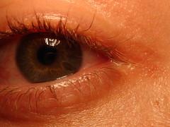 DSC01746 (macronix) Tags: eye me auge nopostmanipulation