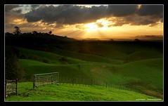 magic in Hunua Rd, AKL (anthonyko) Tags: sunset newzealand cloud green nature wow sony auckland northisland r1 papakura hunua sonyr1 50faves nohdr theunforgettablepictures naturewatcher