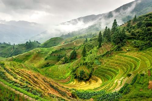 Guilin - Longsheng