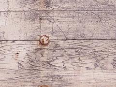 weathered wood & bolt (Mamluke) Tags: wood autumn white building fall blanco minnesota architecture barn rural automne grey gris arquitectura madera grigio country herbst landwirtschaftlich edificio gray grau bolt architektur otoo weathered holz weis costruzione autunno wit bianco blanc btiment gebude architettura hout bois architectuur grijs legno landelijk rurale mamluke debouw architeturra deherfst