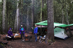 Mt Rainier NP Camping