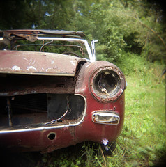 MG-death-III (Buck Lewis) Tags: color 120 car square holga automobile rusty mg crusty thephotoholic