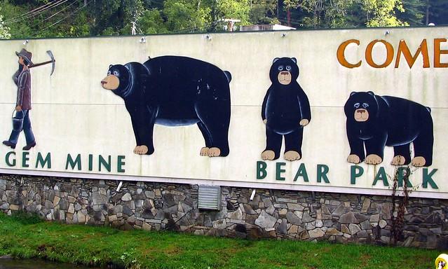 Cherokee, NC Black Bear park