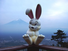 just sittin' lookin' cute (michenv) Tags: japan michenv cute rabbit fuji    kawaguchiko  i500 explore interestingness188 explore06oct06 interestingness bunny funny mtfuji fujisan kawaii landscape blue sky dusk   scenery observationdeck