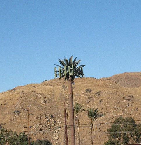 cell tower in disguise #1