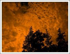Anochecer nublado (jose_miguel) Tags: sunset espaa orange miguel backlight clouds spain bravo jose morocco maroc nubes marrakech fv10 marrakesh marruecos naranja anochecer contaluz canondigitalixus55 magicdonkey outstandingshots marraquech abigfave