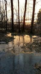 Sunset in Uutela. (Anne Susan Karine) Tags: sunset beautifulnature uutela vuosaari naturelovers suomi finland auringonlasku frozen ice trees myfinland beautifulfinland